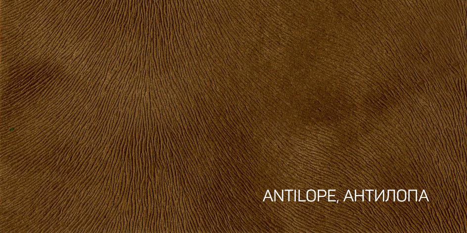 1_ANTILOPE, АНТИЛОПА