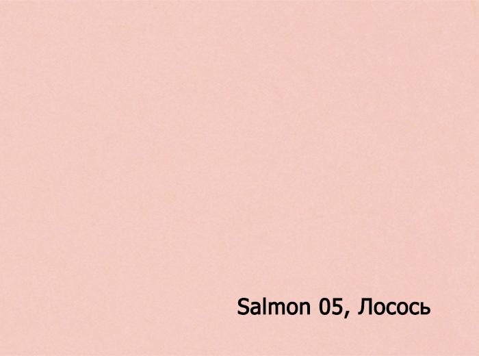 1_Salmon 05, Лосось