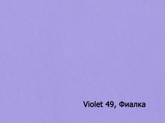 4_Violet 49, Фиалка