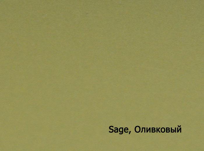 7_Sage, Оливковый