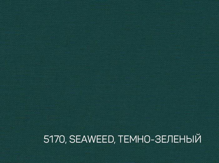 2_SEAWEED, ТЕМНО-ЗЕЛЕНЫЙ